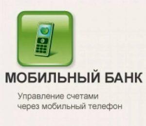 Мобильный банк Сбербанка по смс